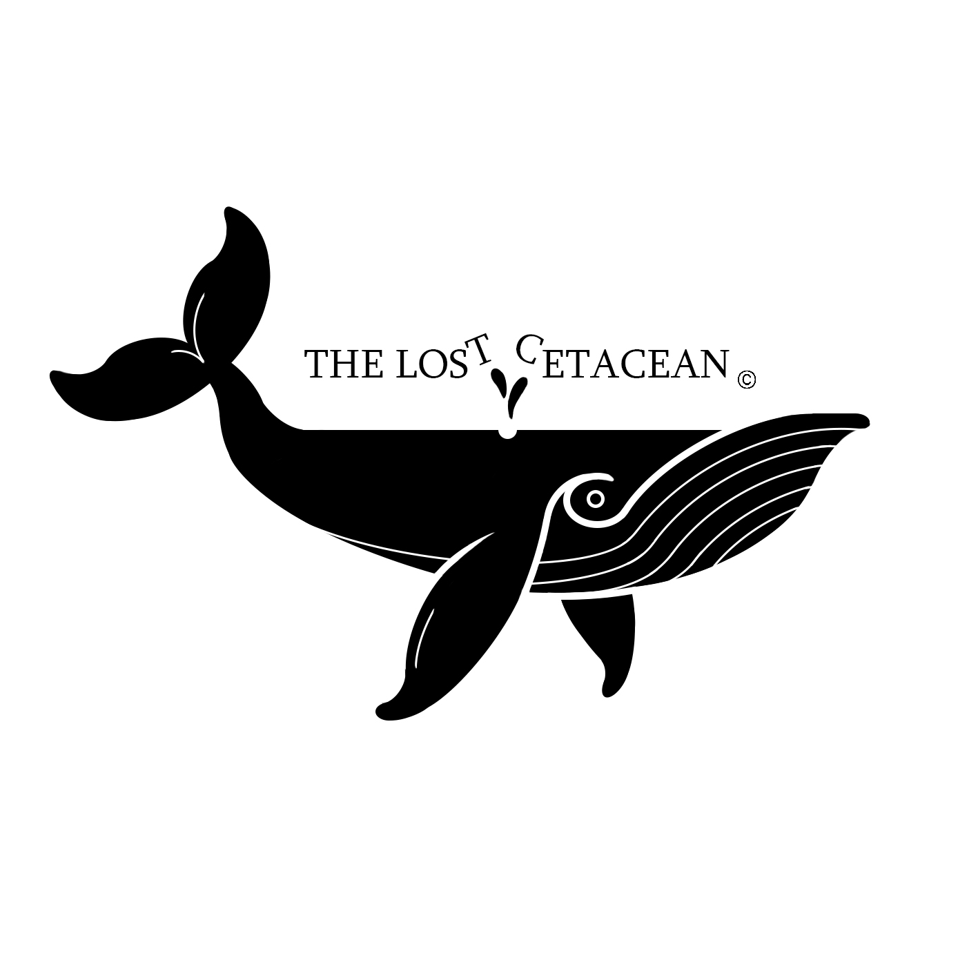 the lost cetacean